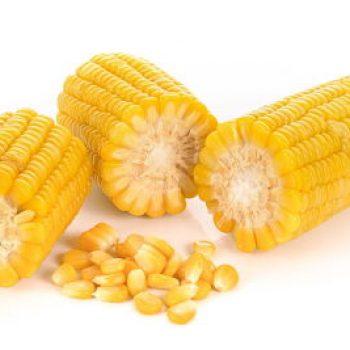 Céréales et mais