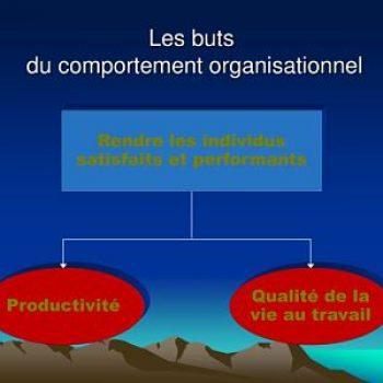 Comportement organisationnel