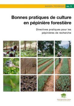 Cultures en pépinière