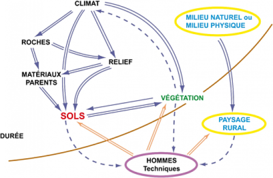 Genèse et classification des sols
