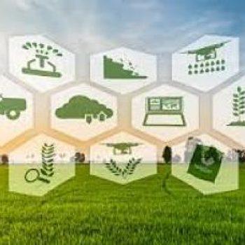 Mise en marche des produits agricoles