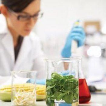 Pratique professionnelle et alimentations agroalimentaires