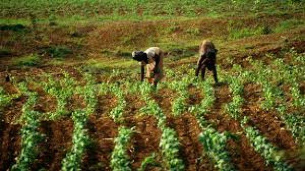 Agro climatologie