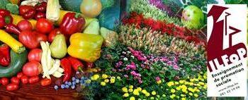 Horticulture générale