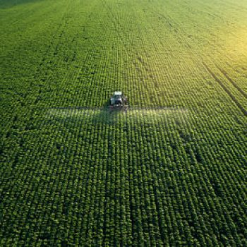 Vulgarisation agricole