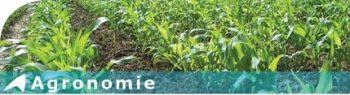 Agronomie générale